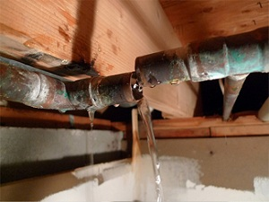 sewer-repair-everett-wa
